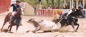 PREMIAÇÕES 2007