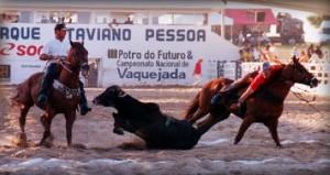 PREMIAÇÕES 2006
