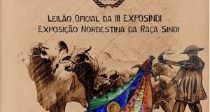 LEILÃO SINDI ESTRELAS